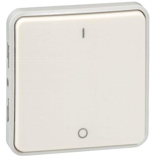 Legrand Plexo Двухполюсный выключатель Белый 10 AX